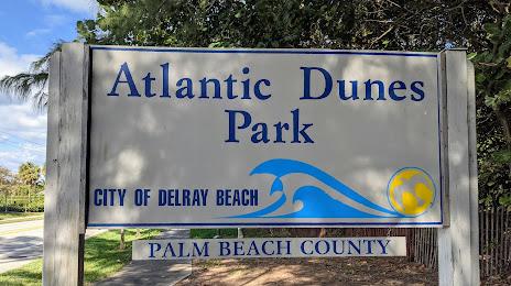 Highland Beach, FL Tree and Stump Services