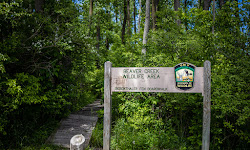 Siebenthaler Fen Boardwalk - Beavercreek Wildlife Area