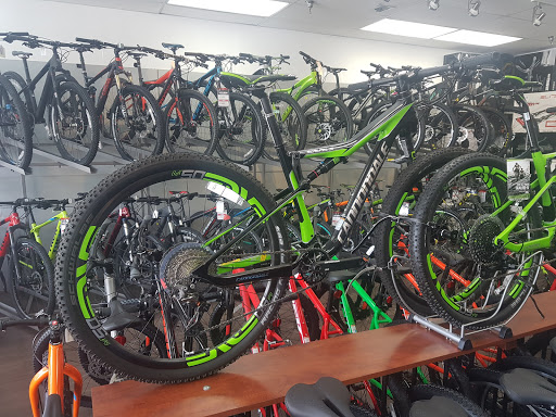 Bicycle Store «City Bikes Aventura», reviews and photos, 20335 Biscayne Blvd, Aventura, FL 33180, USA