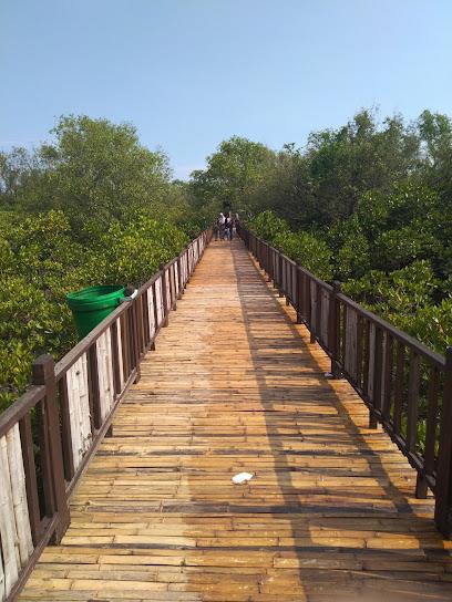 Mangrove tour Wonorejo