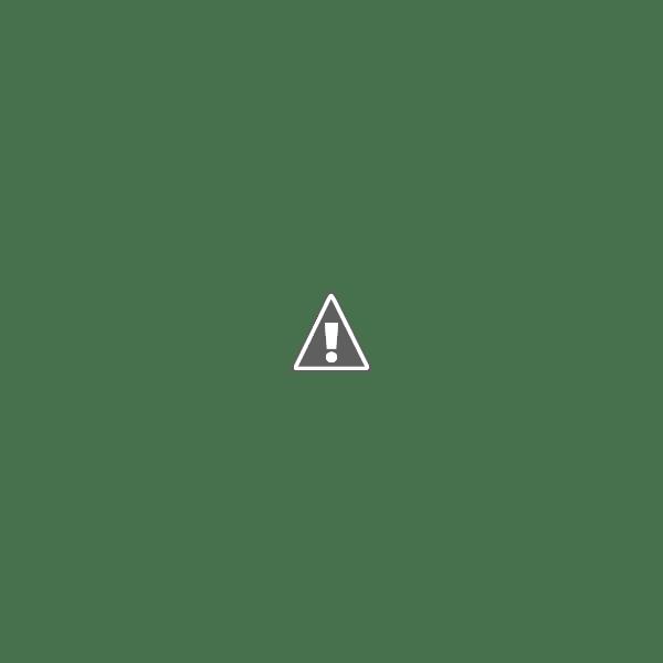 Notting Hill English