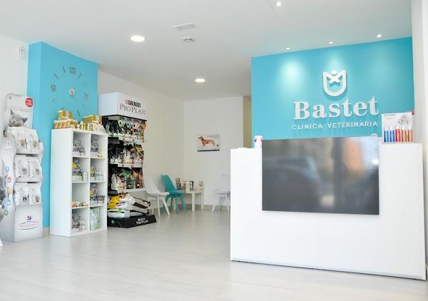 Bastet Clínica Veterinaria