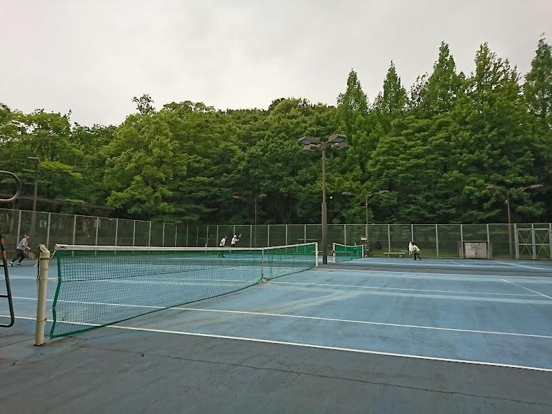 公園 コート 城山 テニス