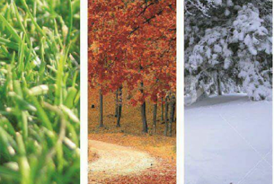 J Z Landscape LLC – Quality Landscaping Service, Mulching Service, Landscaping Specialist, Landscaping Contractor in Grand Rapids MI