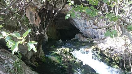 Nacimiento Rio Grande Yunquera