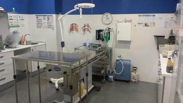Centro Veterinario MR. VET Medina de Pomar