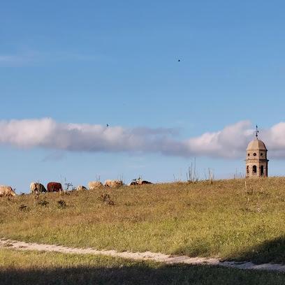 Cerro del Alcázar
