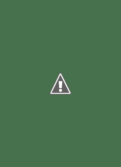Castell de Batea