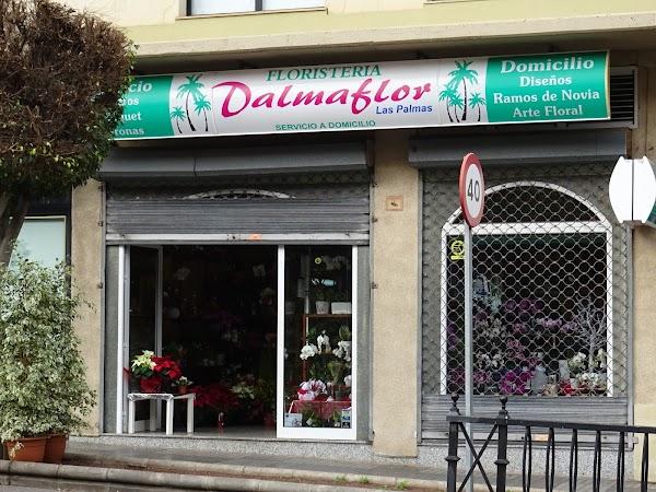 Dalmaflor