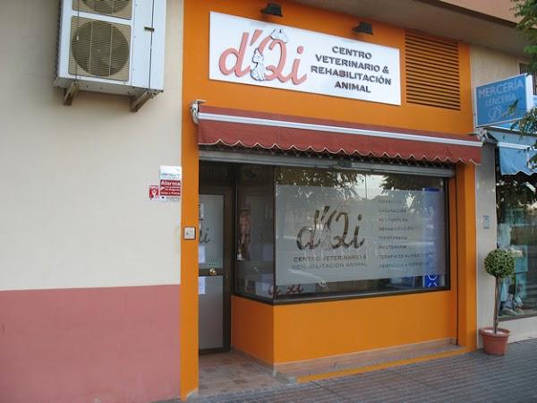 Centro Veterinario dQi