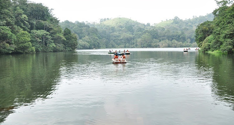 Wayanad Tour Package from Bangalore
