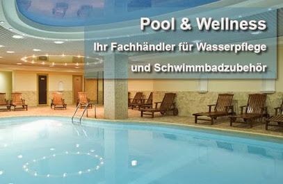 Swimming pool contractor Pool & Wellness