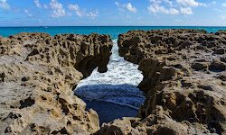 The Nature Conservancy Blowing Rocks Preserve