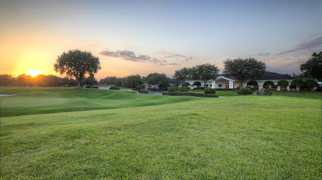 Tampa Turf and Artificial Grass in Land O' Lakes, FL