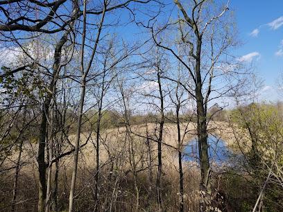 Upper Roxborough Reservoir Preserve