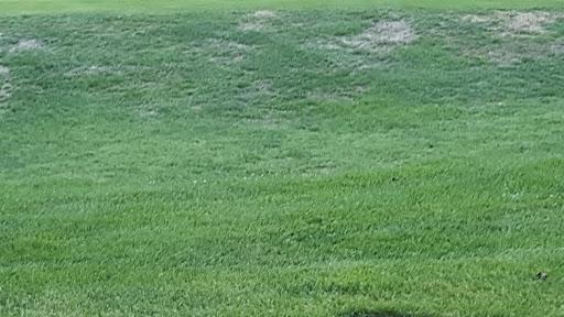 Golf Course «Gunpowder Golf Course», reviews and photos, 14300 Old Gunpowder Rd, Laurel, MD 20707, USA