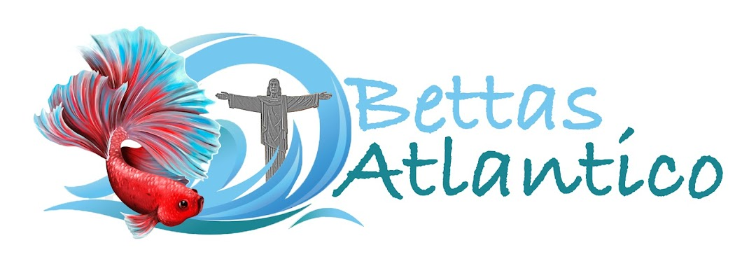 Bettas Atlántico RD