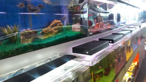 Trop Aquarium
