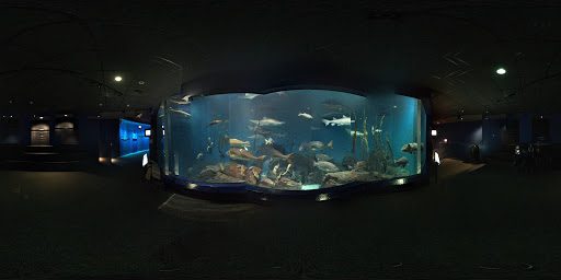 Aquarium «The Maritime Aquarium at Norwalk», reviews and photos, 10 N Water St, Norwalk, CT 06854, USA