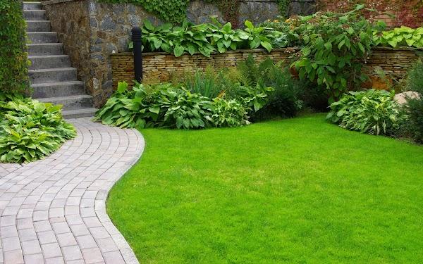 Jardinería CM - Mantenimiento de jardines en Ciudad Real