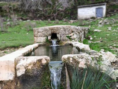 Fuente de La Fuenfria