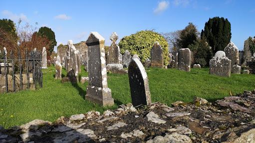 Roofers in Carrigaline, Ireland