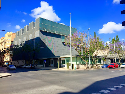 Museo de Bellas Artes de Castellón