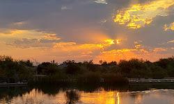 Mansel Carter Oasis Park Lake