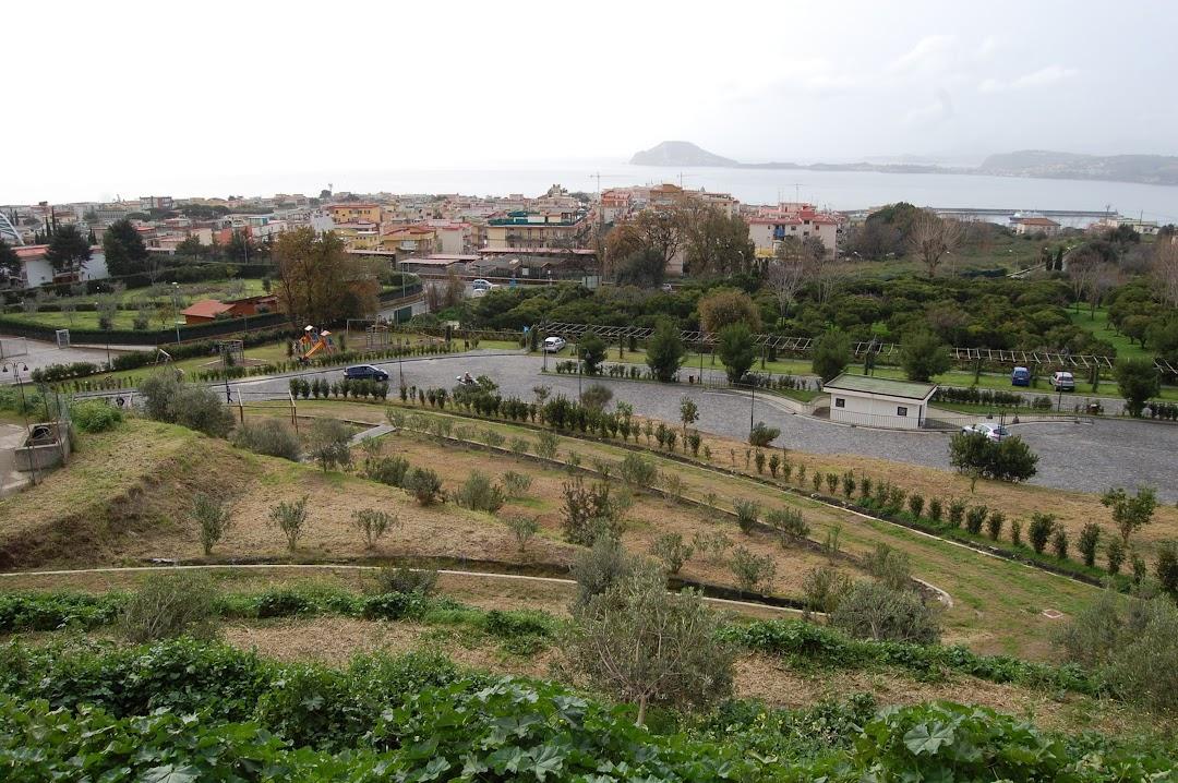 Parco Urbano Attrezzato