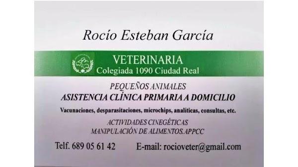 Rocío Esteban García