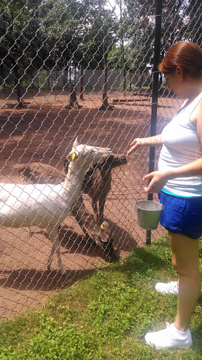 Zoo «Deer Haven Mini Zoo», reviews and photos, 12312 Detour Rd, Keymar, MD 21757, USA