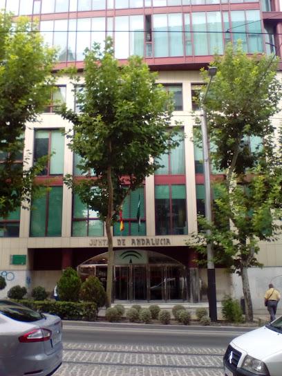 Servicio Andaluz de Empleo, Agencia de colocación en Jaén