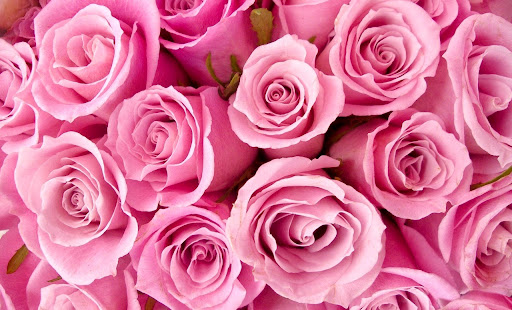 Florist «Wildflowers With Tami», reviews and photos, 46 Sparta Ave, Newton, NJ 07860, USA