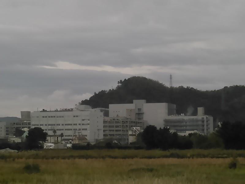 工業 株式 亜 会社 日 化学