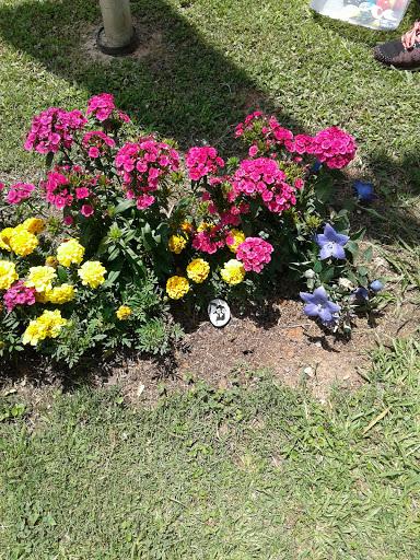 Park «Memorial Park», reviews and photos, 106 Jennings Way, Stockbridge, GA 30281, USA