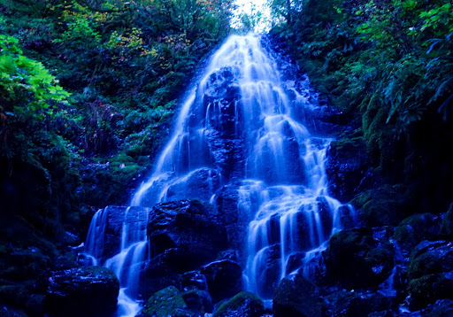 Tourist Attraction «Fairy Falls», reviews and photos, Wahkeena Trail #420, Corbett, OR 97019, USA