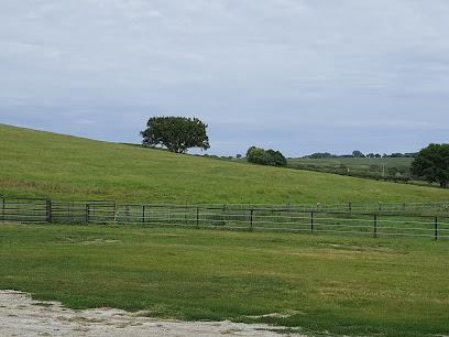 Horse breeder Pryor Ranch
