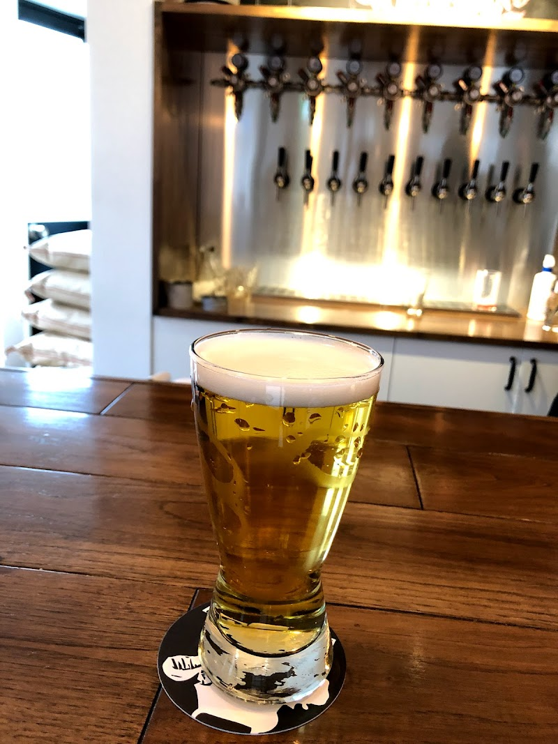クラフトビール 醸造所 riot beer
