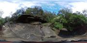 Business Reviews Aggregator: Lane Cove National Park