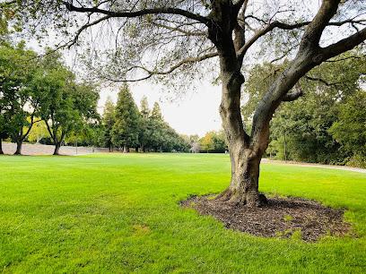 Moller Park