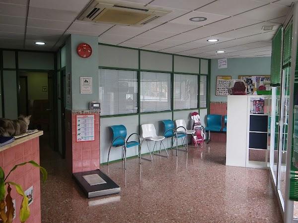 Centro Veterinario Blasvet