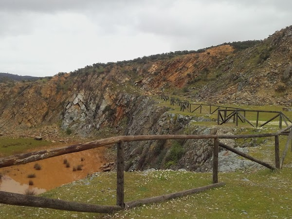 Andaluza de Jardinera