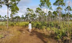 Savannas Preserve State Park