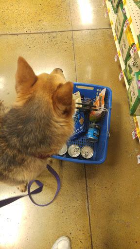 Pet Supply Store «PetSmart», reviews and photos, 3341 N Montana Ave, Helena, MT 59602, USA