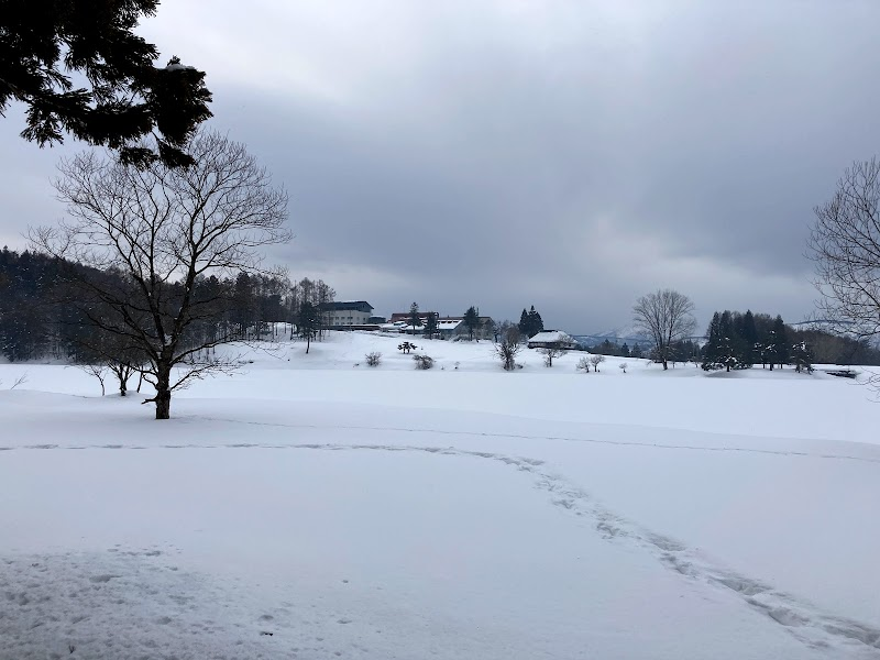 SNOW CRYSTAL YOGA & WELLNESS by LIVE THE SEASONs