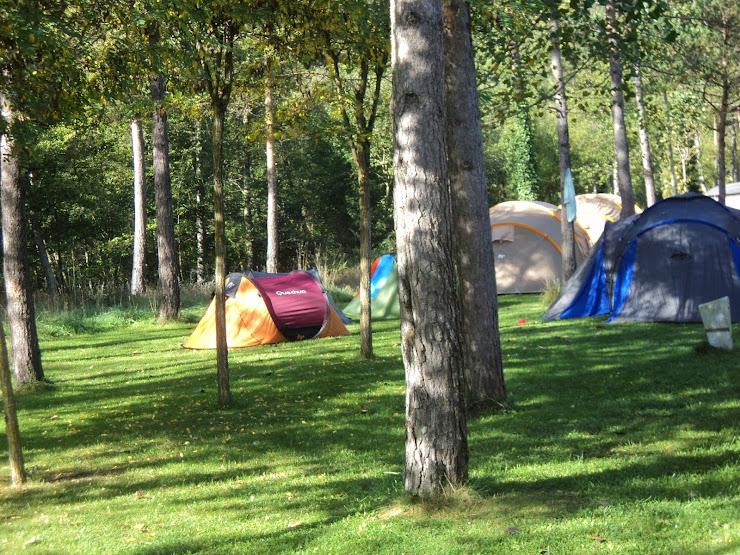 Camping Pirinenc Carr. Gombren, km 3, 17530 Campdevànol, Girona