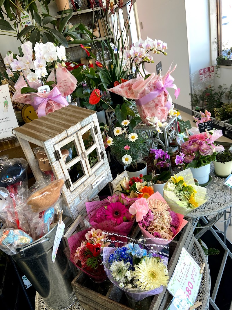 花と緑の店 Foglio