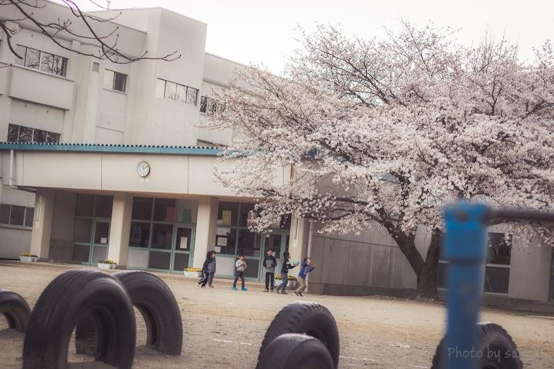 上田市立丸子中央小学校 (長野県上田市上丸子 小学校 / 学校, 塾 ...