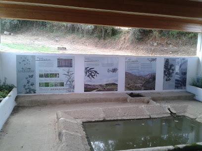 Las Lavanderas Botanical Garden