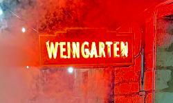 Pontotoc Vineyard Weingarten